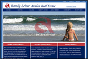 Randy Leiser, Realtor